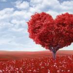 Melepaskan Cinta