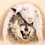 Serigala Berbulu Domba