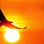 Terbang Bersama Tuhan