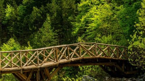 Jembatan Penghubung