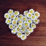 Bila Tak Mencintaimu