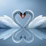 Menjaga Hati