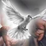Roh Jangan Lemah