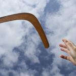 Boomerang Dosa