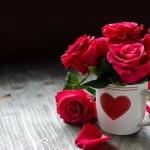 Cinta Itu Seperti Kuncup Bunga