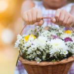 Hati yang Serakah Lupa Caranya untuk Bersyukur
