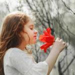 Hati yang Baik Diberkati